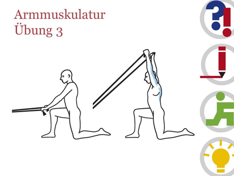 Armmuskulatur Übung 3