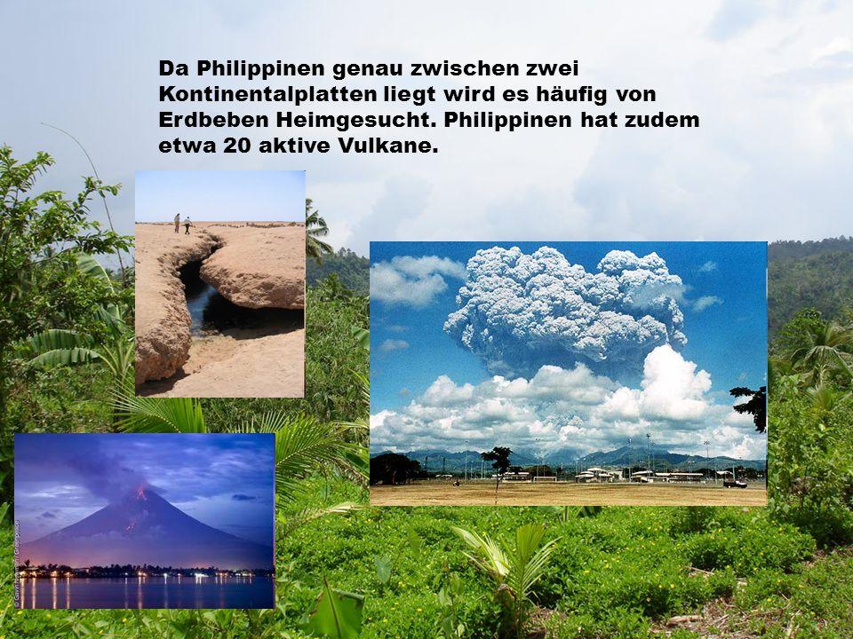 Da Philippinen genau zwischen zwei Kontinentalplatten liegt wird es häufig von Erdbeben Heimgesucht.
