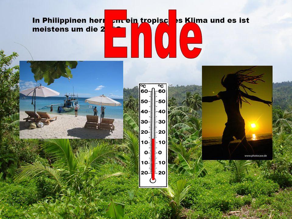 In Philippinen herrscht ein tropisches Klima und es ist meistens um die 26 °C.