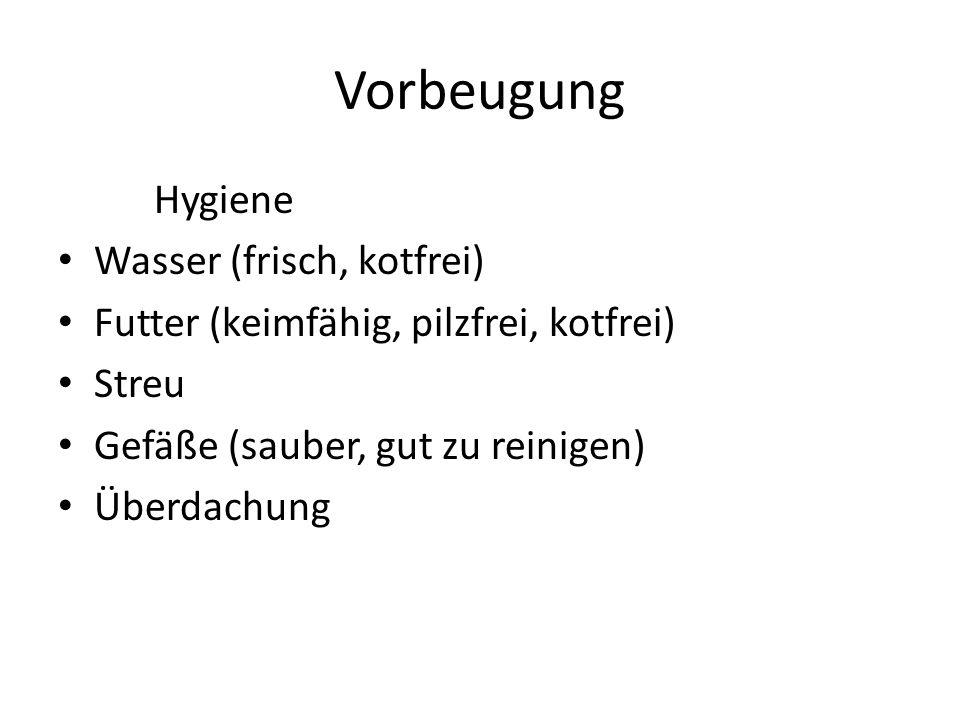 Vorbeugung Hygiene Wasser (frisch, kotfrei) Futter (keimfähig, pilzfrei, kotfrei) Streu Gefäße (sauber, gut zu reinigen) Überdachung