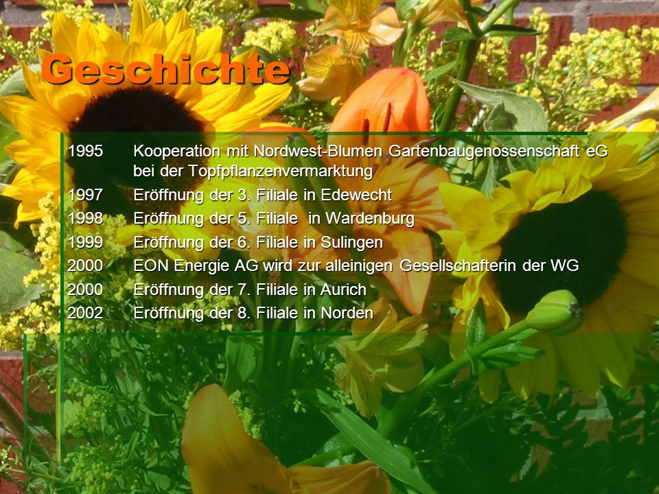 Geschichte 1995Kooperation mit Nordwest-Blumen Gartenbaugenossenschaft eG bei der Topfpflanzenvermarktung 1997Eröffnung der 3. Filiale in Edewecht 199