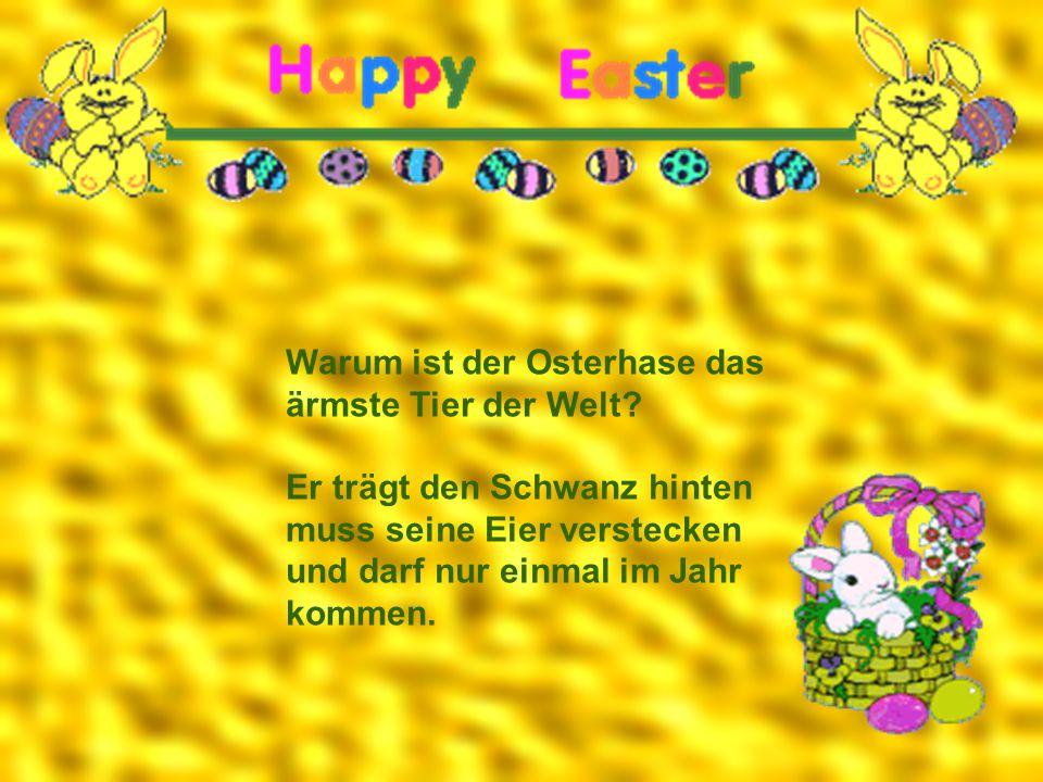 Warum ist der Osterhase das ärmste Tier der Welt? Er trägt den Schwanz hinten muss seine Eier verstecken und darf nur einmal im Jahr kommen.