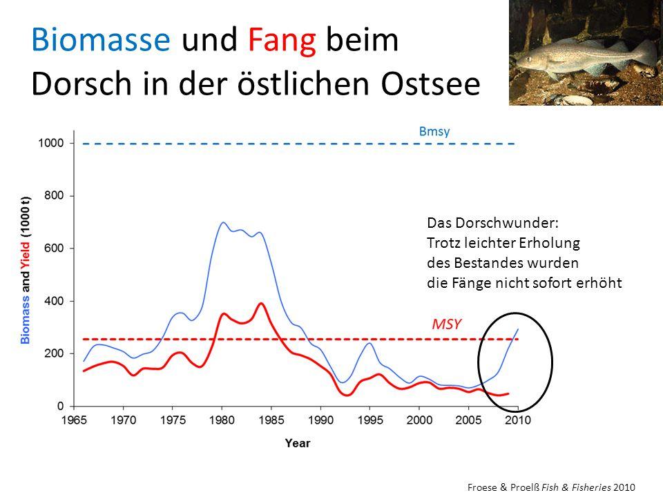 Biomasse und Fang beim Dorsch in der östlichen Ostsee Froese & Proelß Fish & Fisheries 2010 Das Dorschwunder: Trotz leichter Erholung des Bestandes wurden die Fänge nicht sofort erhöht