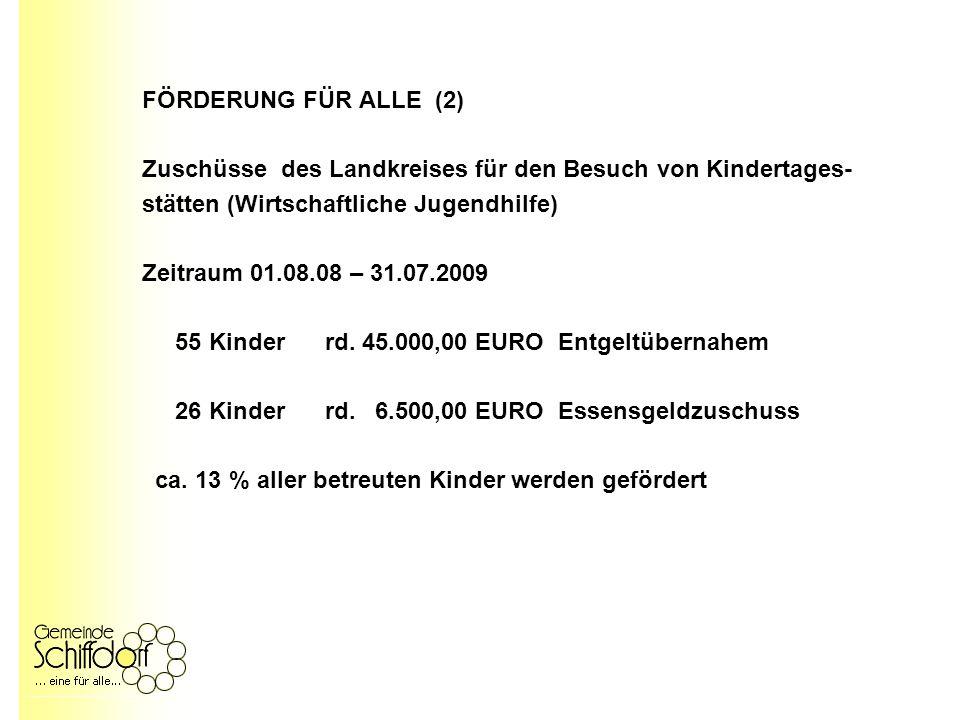 FÖRDERUNG FÜR ALLE (2) Zuschüsse des Landkreises für den Besuch von Kindertages- stätten (Wirtschaftliche Jugendhilfe) Zeitraum 01.08.08 – 31.07.2009 55 Kinder rd.