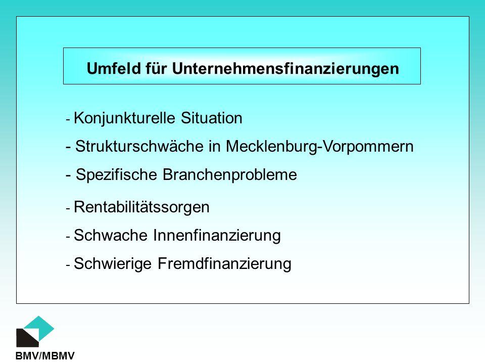 BMV/MBMV Umfeld für Unternehmensfinanzierungen - Schwache Innenfinanzierung - Schwierige Fremdfinanzierung - Konjunkturelle Situation - Rentabilitätss