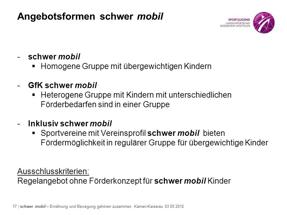 17 | schwer mobil – Ernährung und Bewegung gehören zusammen, Kamen-Kaiserau 03.05.2012 Angebotsformen schwer mobil -schwer mobil  Homogene Gruppe mit