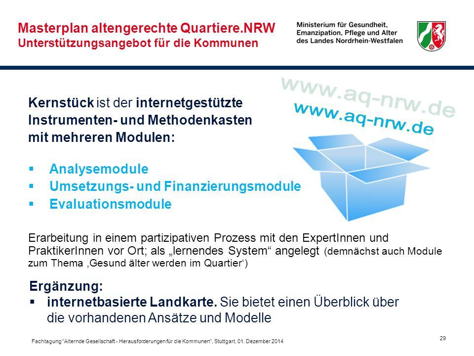 29 Kernstück ist der internetgestützte Instrumenten- und Methodenkasten mit mehreren Modulen:  Analysemodule  Umsetzungs- und Finanzierungsmodule 