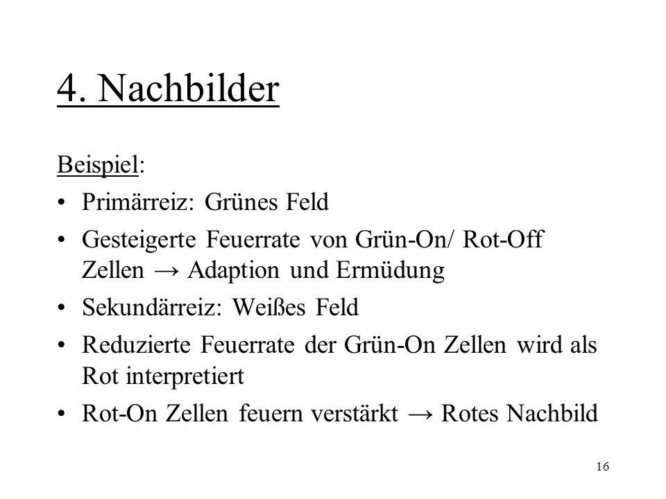 16 4. Nachbilder Beispiel: Primärreiz: Grünes Feld Gesteigerte Feuerrate von Grün-On/ Rot-Off Zellen → Adaption und Ermüdung Sekundärreiz: Weißes Feld