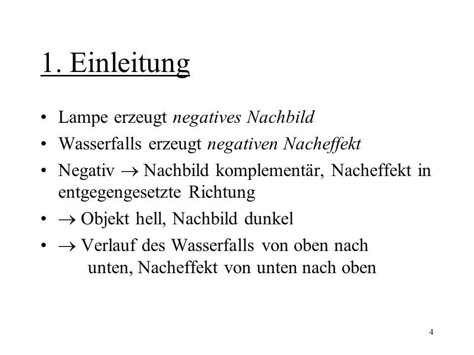 4 1. Einleitung Lampe erzeugt negatives Nachbild Wasserfalls erzeugt negativen Nacheffekt Negativ  Nachbild komplementär, Nacheffekt in entgegengeset