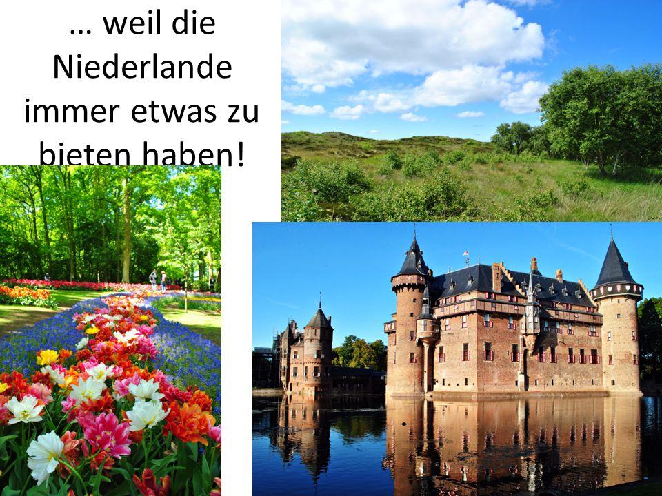 … weil die Niederlande immer etwas zu bieten haben!