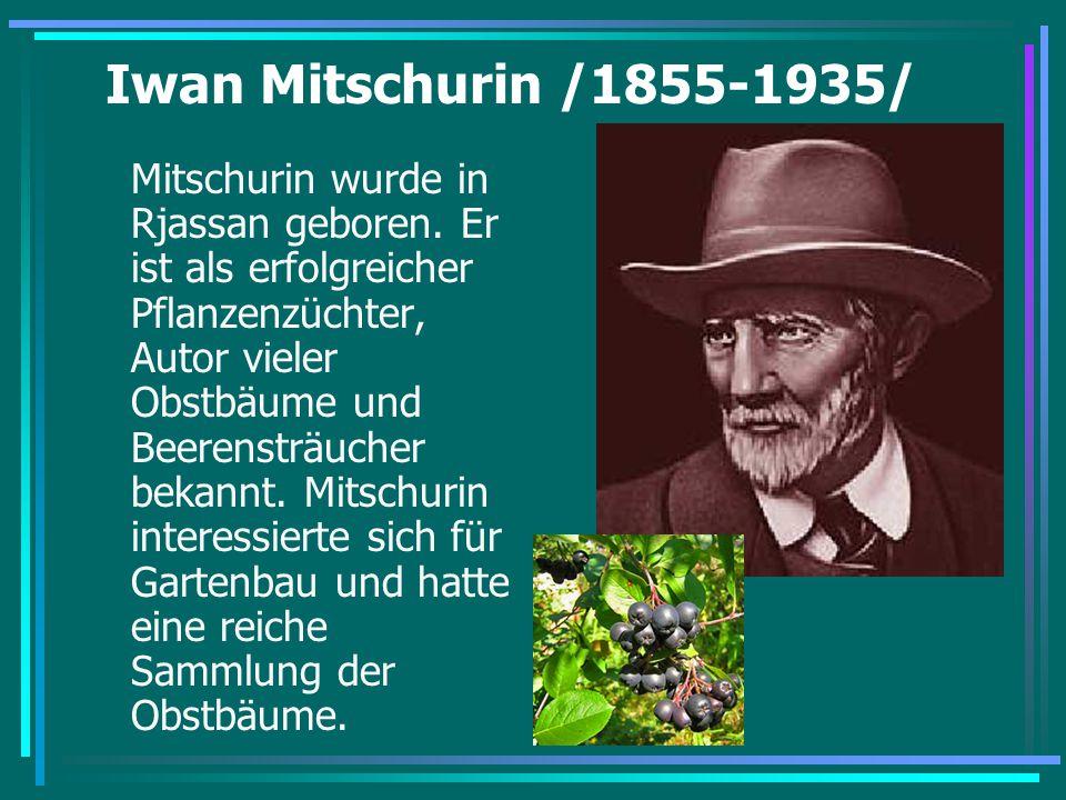 Iwan Mitschurin /1855-1935/ Mitschurin wurde in Rjassan geboren. Er ist als erfolgreicher Pflanzenzüchter, Autor vieler Obstbäume und Beerensträucher