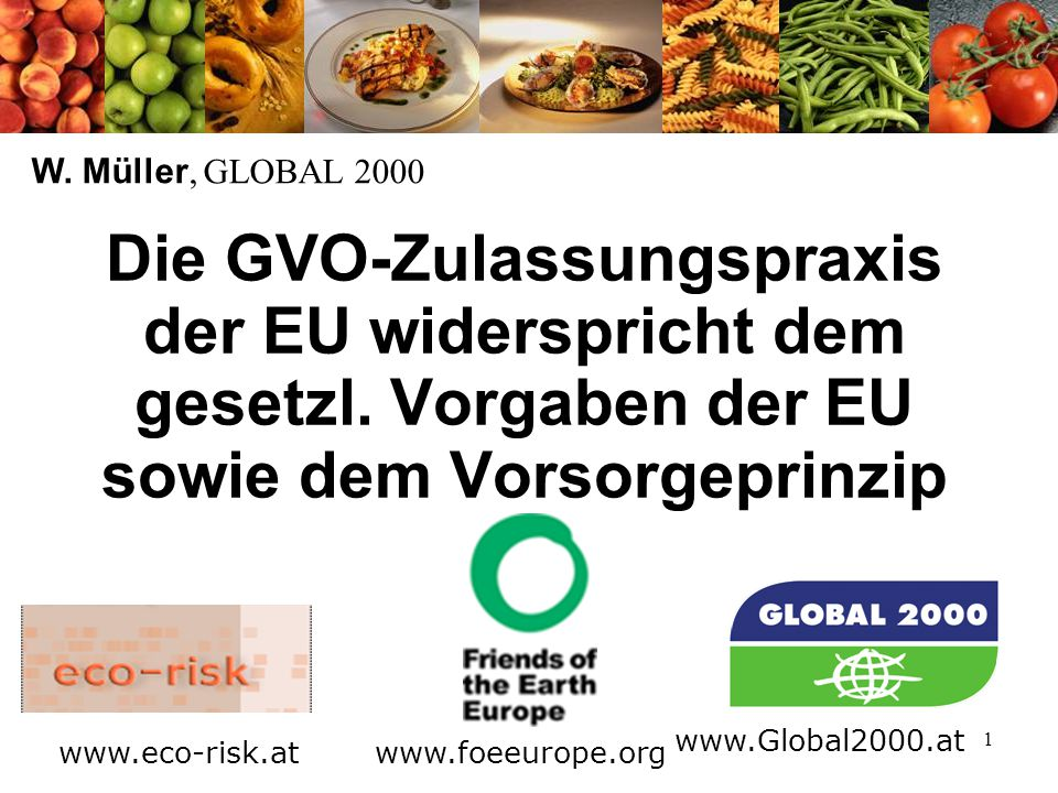 1 Die GVO-Zulassungspraxis der EU widerspricht dem gesetzl. Vorgaben der EU sowie dem Vorsorgeprinzip W. Müller, GLOBAL 2000 www.foeeurope.org www.Glo