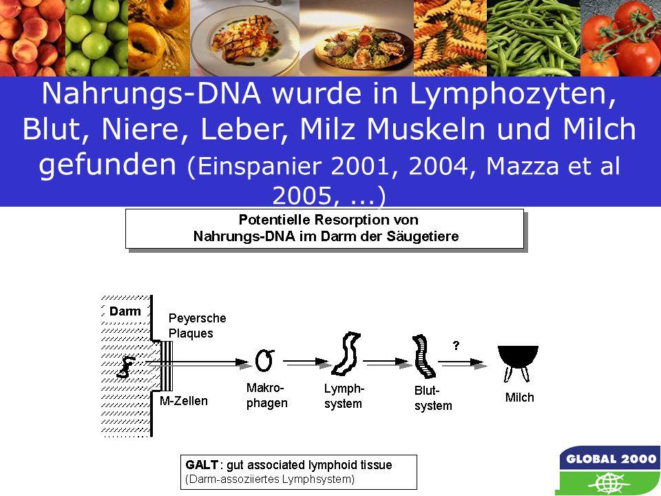 47 Nahrungs-DNA wurde in Lymphozyten, Blut, Niere, Leber, Milz Muskeln und Milch gefunden (Einspanier 2001, 2004, Mazza et al 2005,...)