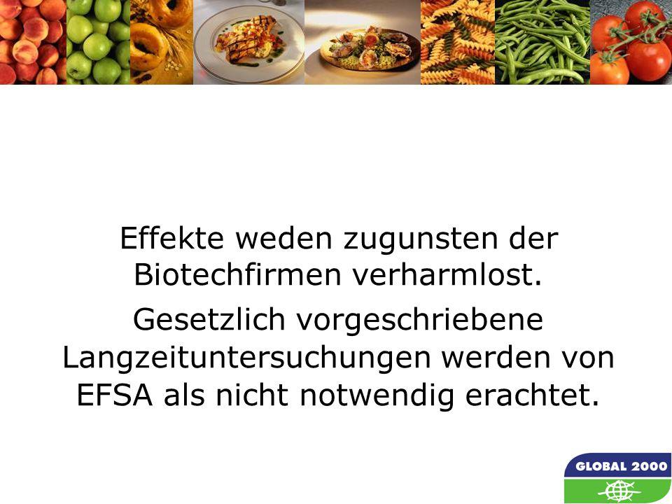 56 Effekte weden zugunsten der Biotechfirmen verharmlost. Gesetzlich vorgeschriebene Langzeituntersuchungen werden von EFSA als nicht notwendig eracht