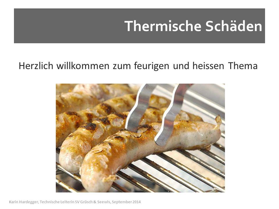 Thermische Schäden Herzlich willkommen zum feurigen und heissen Thema Karin Hardegger, Technische Leiterin SV Grüsch & Seewis, September 2014