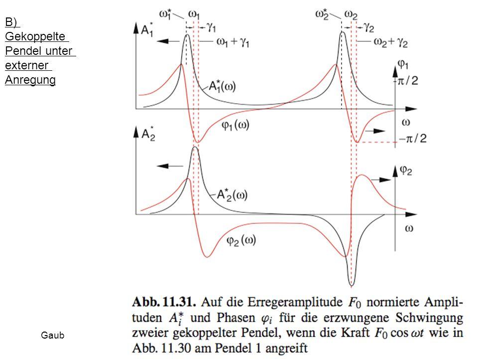 B) Gekoppelte Pendel unter externer Anregung Gaub