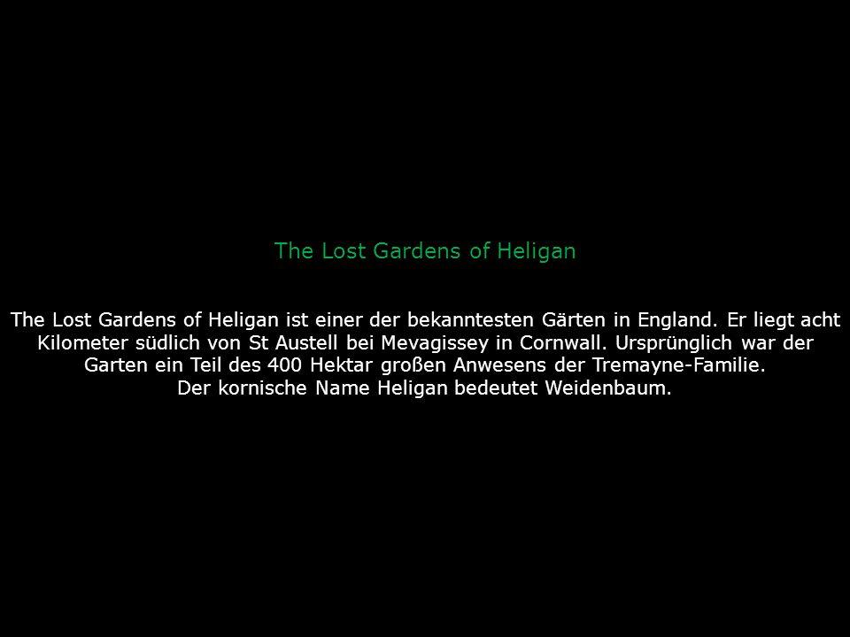 Bizarre und prachtvolle Gärten in der Welt
