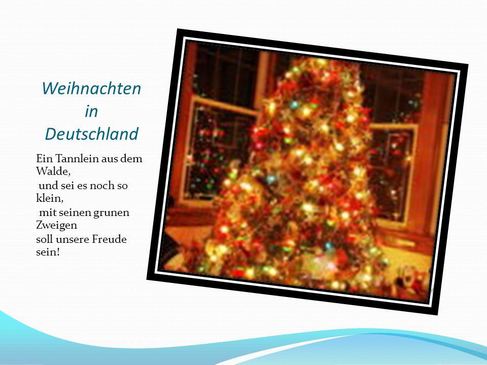 Weihnachten in Deutschland Ein Tannlein aus dem Walde, und sei es noch so klein, mit seinen grunen Zweigen soll unsere Freude sein!