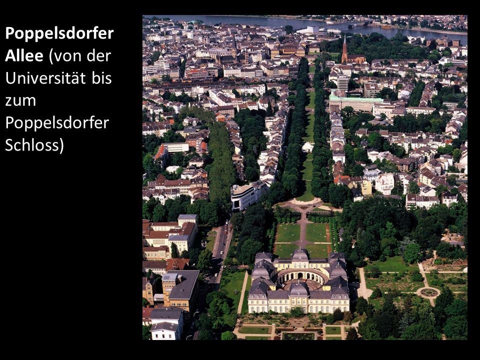 Poppelsdorfer Allee (von der Universität bis zum Poppelsdorfer Schloss)