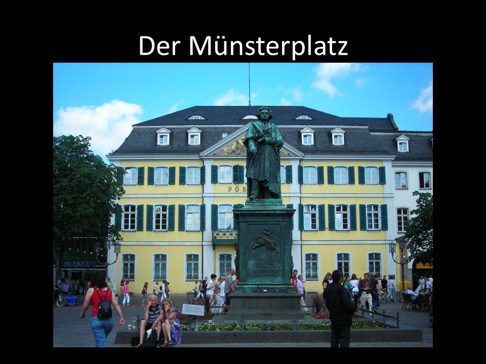 Der Münsterplatz