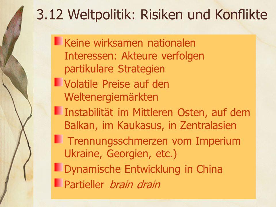 3.12 Weltpolitik: Risiken und Konflikte Keine wirksamen nationalen Interessen: Akteure verfolgen partikulare Strategien Volatile Preise auf den Weltenergiemärkten Instabilität im Mittleren Osten, auf dem Balkan, im Kaukasus, in Zentralasien Trennungsschmerzen vom Imperium Ukraine, Georgien, etc.) Dynamische Entwicklung in China Partieller brain drain