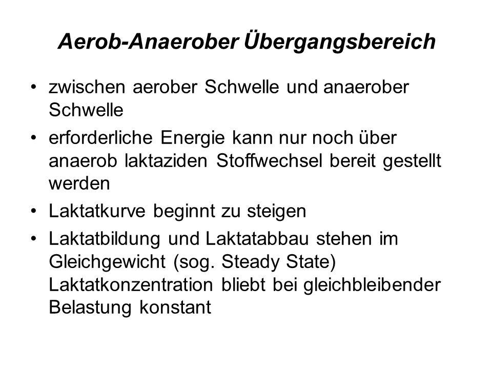 Aerob-Anaerober Übergangsbereich zwischen aerober Schwelle und anaerober Schwelle erforderliche Energie kann nur noch über anaerob laktaziden Stoffwec
