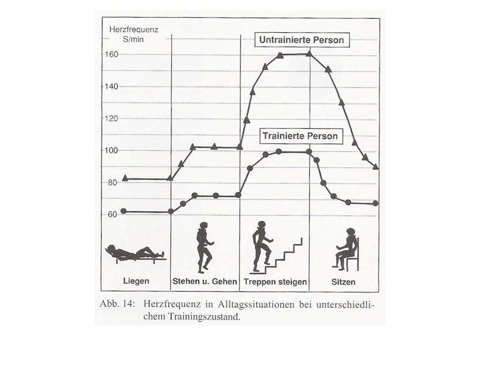 Trainingszustand: Ruhepuls > 90 geringe aerobe Kapazität 70-90 mittlere aerobe Kapazität 50-70 gute aerobe Kapazität < 50 sehr gute aerobe Kapazität