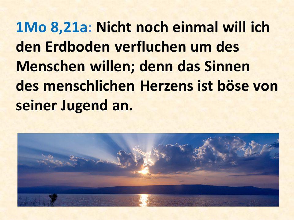 1Mo 8,21a: Nicht noch einmal will ich den Erdboden verfluchen um des Menschen willen; denn das Sinnen des menschlichen Herzens ist böse von seiner Jug