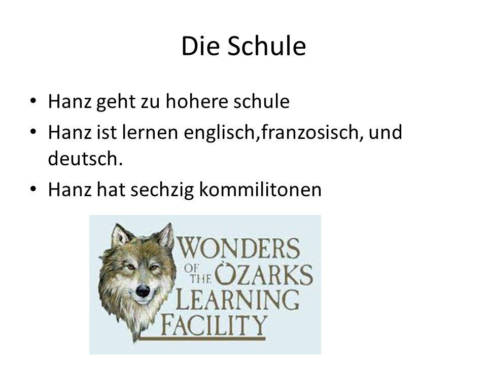 Die Schule Hanz geht zu hohere schule Hanz ist lernen englisch,franzosisch, und deutsch.