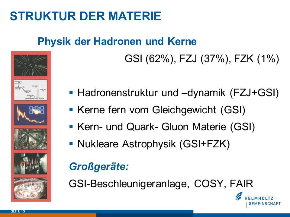 SEITE 13 STRUKTUR DER MATERIE Physik der Hadronen und Kerne GSI (62%), FZJ (37%), FZK (1%)  Hadronenstruktur und –dynamik (FZJ+GSI)  Kerne fern vom