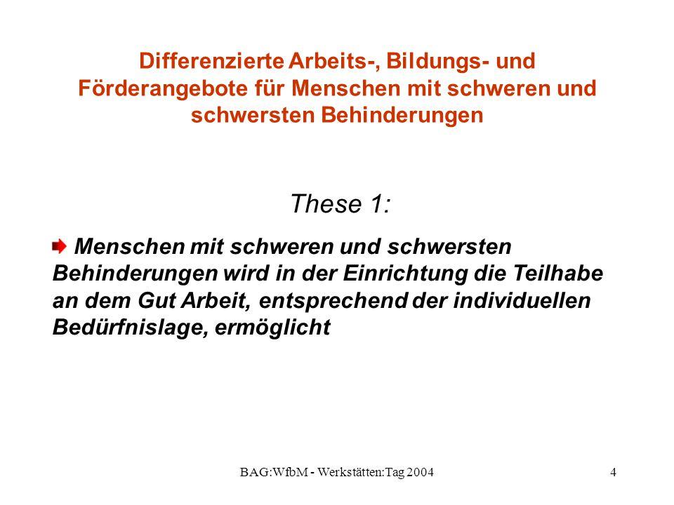 BAG:WfbM - Werkstätten:Tag 20044 Differenzierte Arbeits-, Bildungs- und Förderangebote für Menschen mit schweren und schwersten Behinderungen These 1: