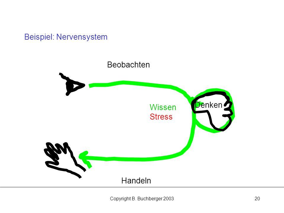 Copyright B. Buchberger 200320 Beispiel: Nervensystem Beobachten Handeln Denken Wissen Stress