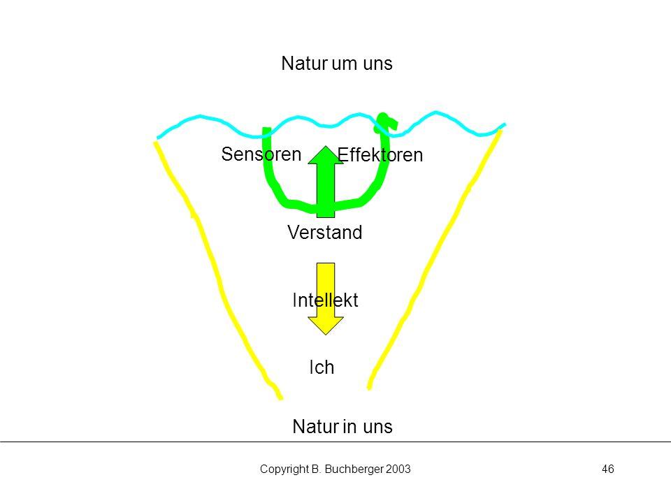 Copyright B. Buchberger 200346 Natur in uns Ich Verstand Natur um uns Sensoren Effektoren Intellekt