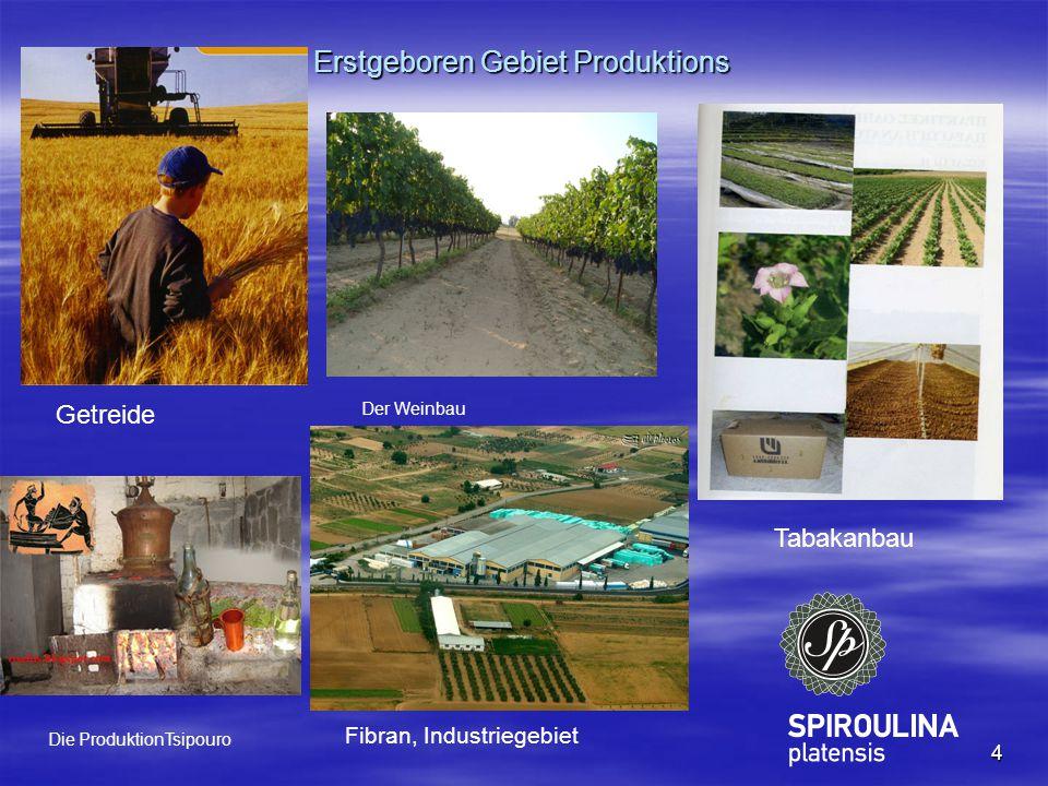 4 Erstgeboren Gebiet Produktions Getreide Tabakanbau Fibran, Industriegebiet Der Weinbau Die ProduktionTsipouro
