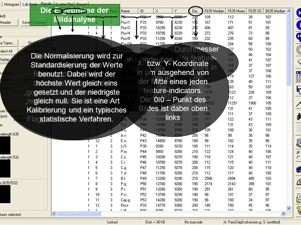 Die Ergebnisse der Bildanalyse Durchmesser des feature- indicators in µm Angabe der feature- Position im Block Name und eindeutige Identifikation des jeweiligen feature in Anlehnung an die Datenliste (array list) X- bzw.