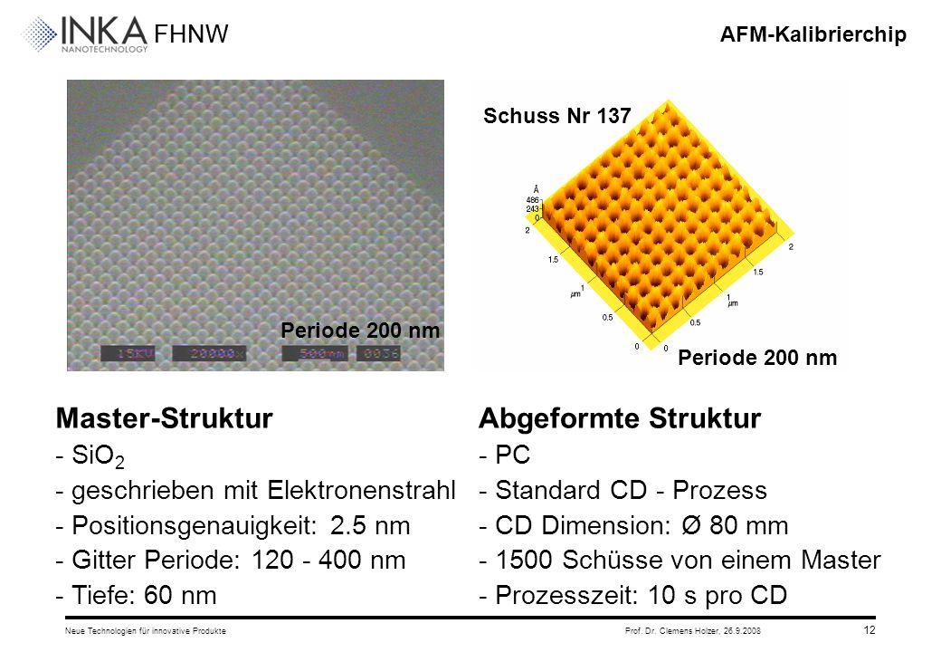 FHNW 26.9.2008Neue Technologien für innovative ProdukteProf. Dr. Clemens Holzer, 12 AFM-Kalibrierchip Master-Struktur - SiO 2 - geschrieben mit Elektr