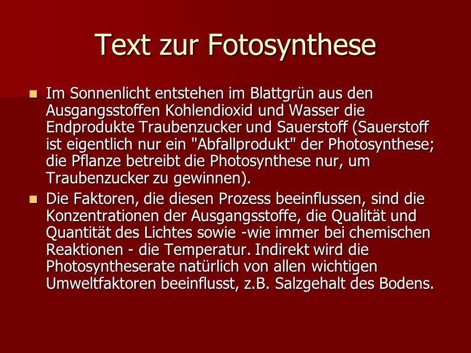 Text zur Fotosynthese Im Sonnenlicht entstehen im Blattgrün aus den Ausgangsstoffen Kohlendioxid und Wasser die Endprodukte Traubenzucker und Sauersto