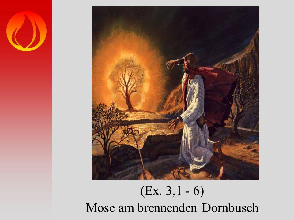 (Ex. 3,1 - 6) Mose am brennenden Dornbusch
