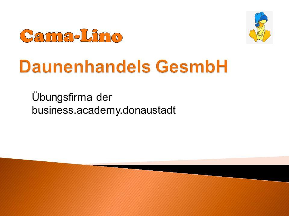 Übungsfirma der business.academy.donaustadt