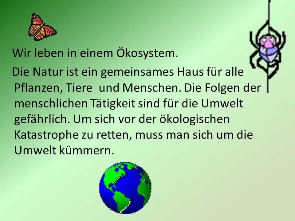 Wir leben in einem Ökosystem. Die Natur ist ein gemeinsames Haus für alle Pflanzen, Tiere und Menschen. Die Folgen der menschlichen Tätigkeit sind für