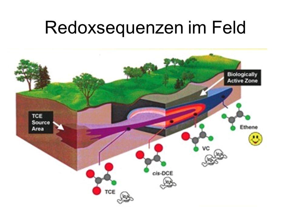Redoxsequenzen im Feld