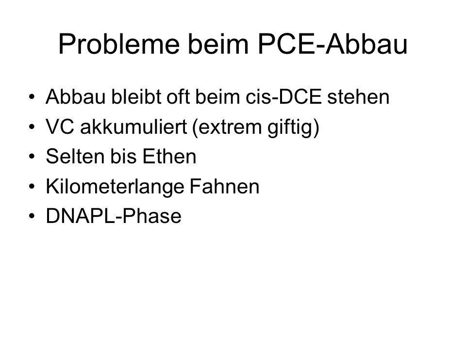 Probleme beim PCE-Abbau Abbau bleibt oft beim cis-DCE stehen VC akkumuliert (extrem giftig) Selten bis Ethen Kilometerlange Fahnen DNAPL-Phase