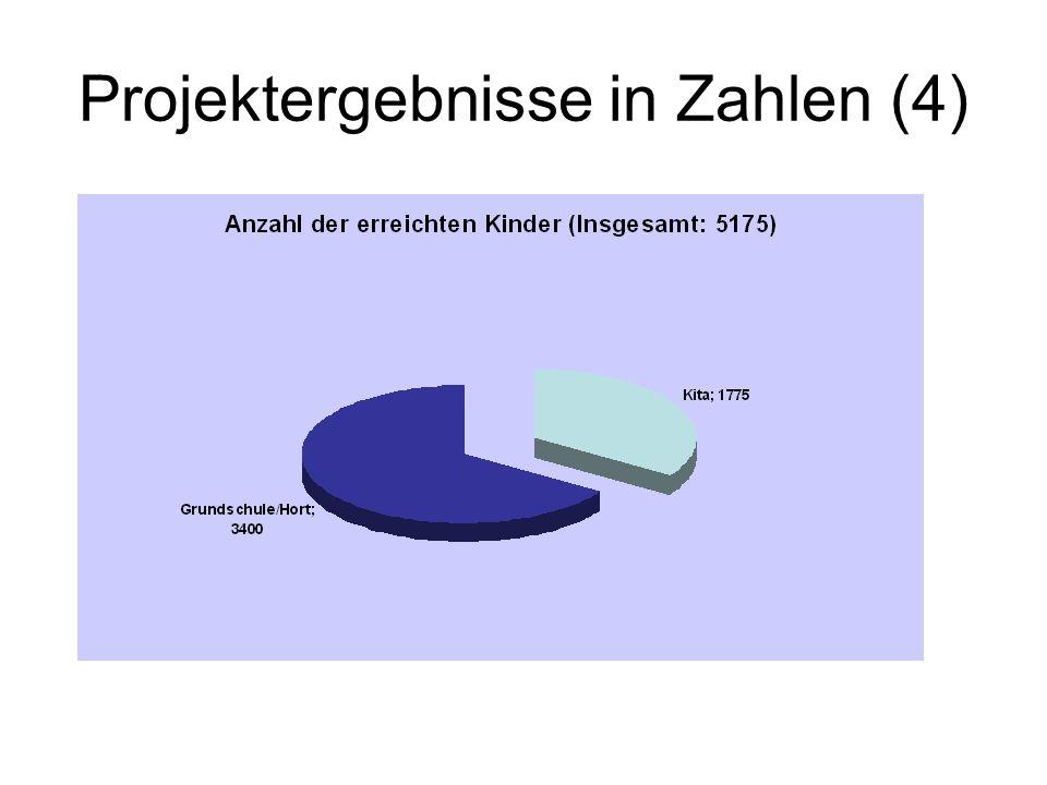 Projektergebnisse in Zahlen (4)