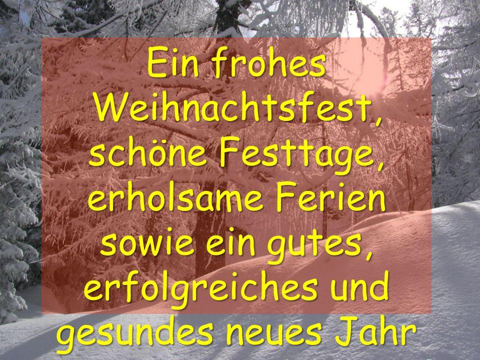 Ein frohes Weihnachtsfest, schöne Festtage, erholsame Ferien sowie ein gutes, erfolgreiches und gesundes neues Jahr 2009 !