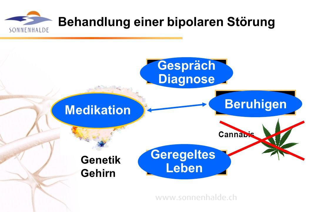 Behandlung einer bipolaren Störung Genetik Gehirn Lebens- belastungen Biosoziale Rhythmen Akuter Stress Cannabis Gespräch Diagnose Beruhigen Geregelte