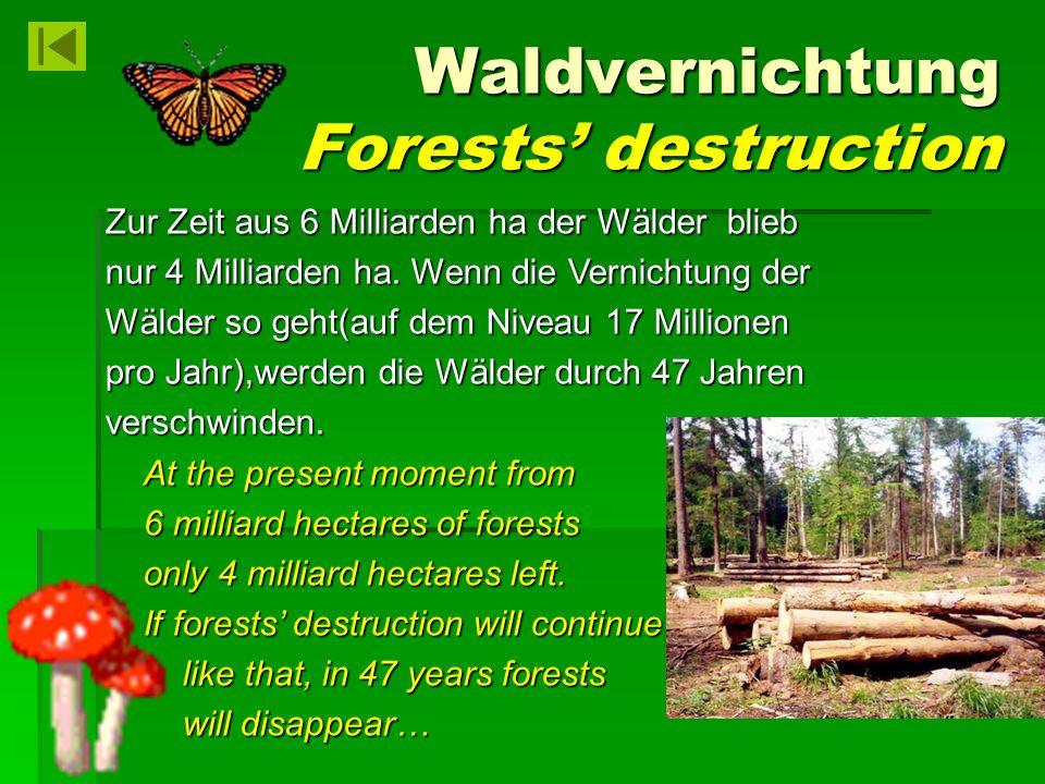 Waldvernichtung Forests' destruction Waldvernichtung Forests' destruction Zur Zeit aus 6 Milliarden ha der Wälder blieb nur 4 Milliarden ha. Wenn die