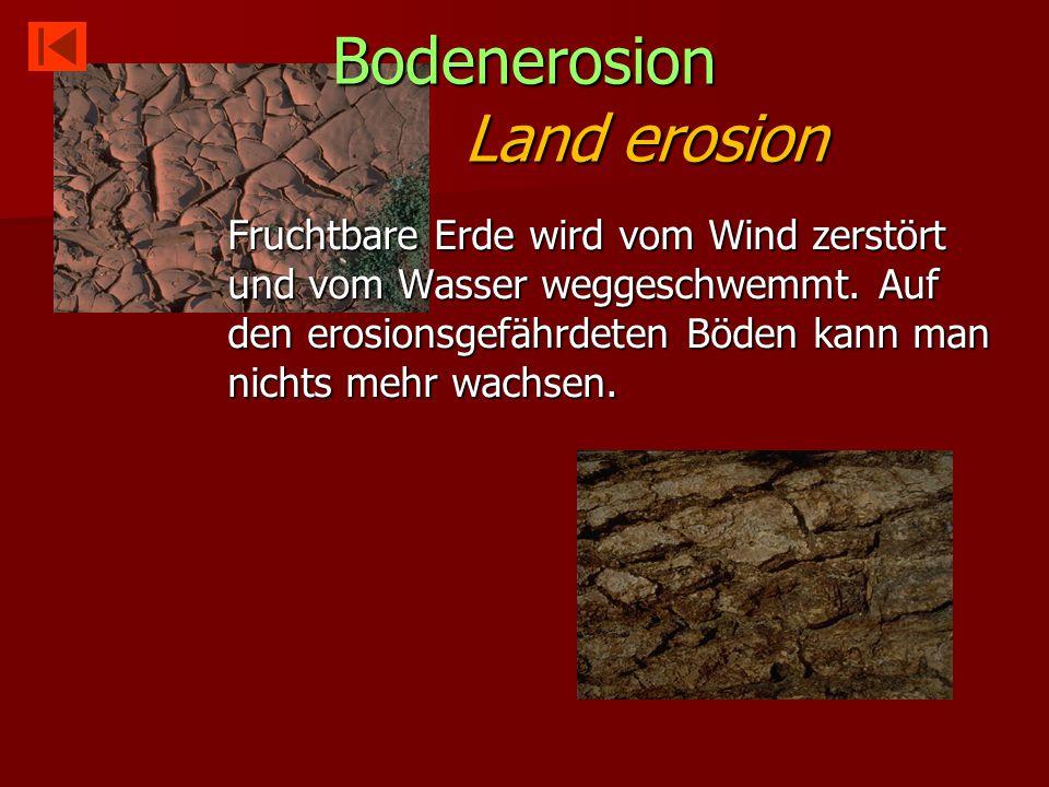 Bodenerosion Land erosion Fruchtbare Erde wird vom Wind zerstört und vom Wasser weggeschwemmt.
