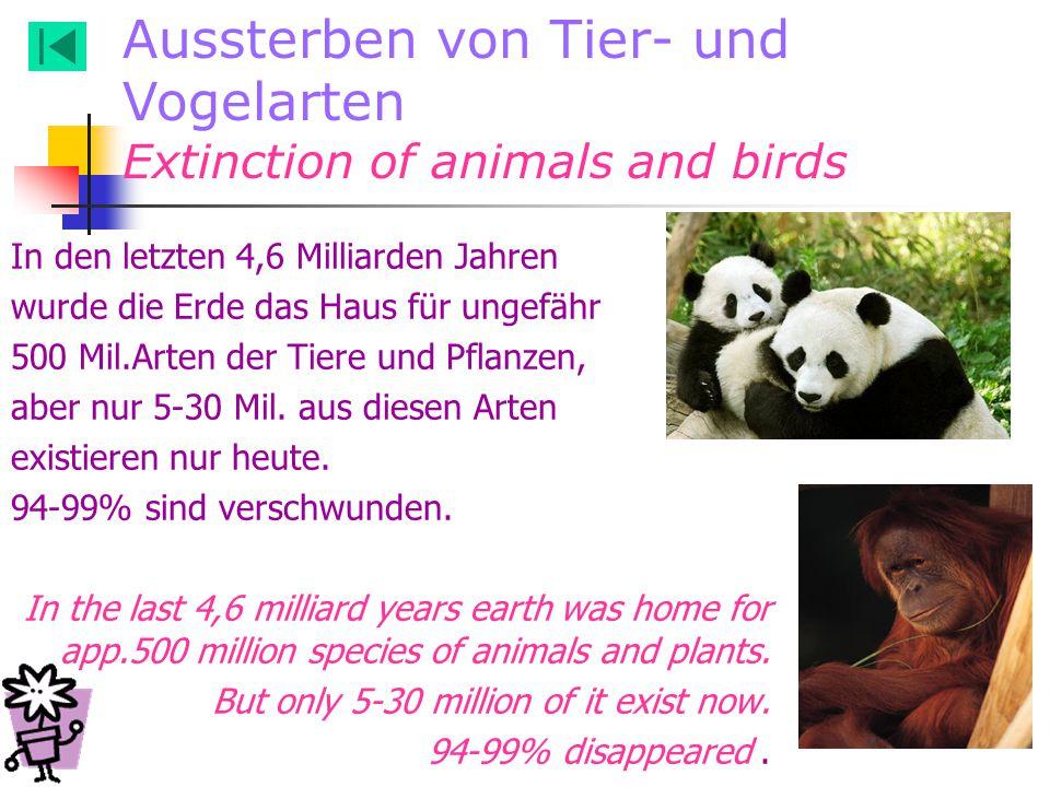 In den letzten 4,6 Milliarden Jahren wurde die Erde das Haus für ungefähr 500 Mil.Arten der Tiere und Pflanzen, aber nur 5-30 Mil. aus diesen Arten ex