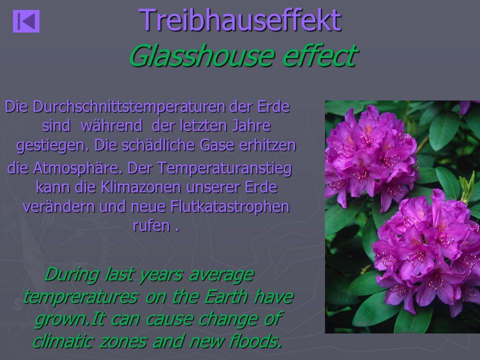 Treibhauseffekt Glasshouse effect Die Durchschnittstemperaturen der Erde sind während der letzten Jahre gestiegen. Die schädliche Gase erhitzen die At