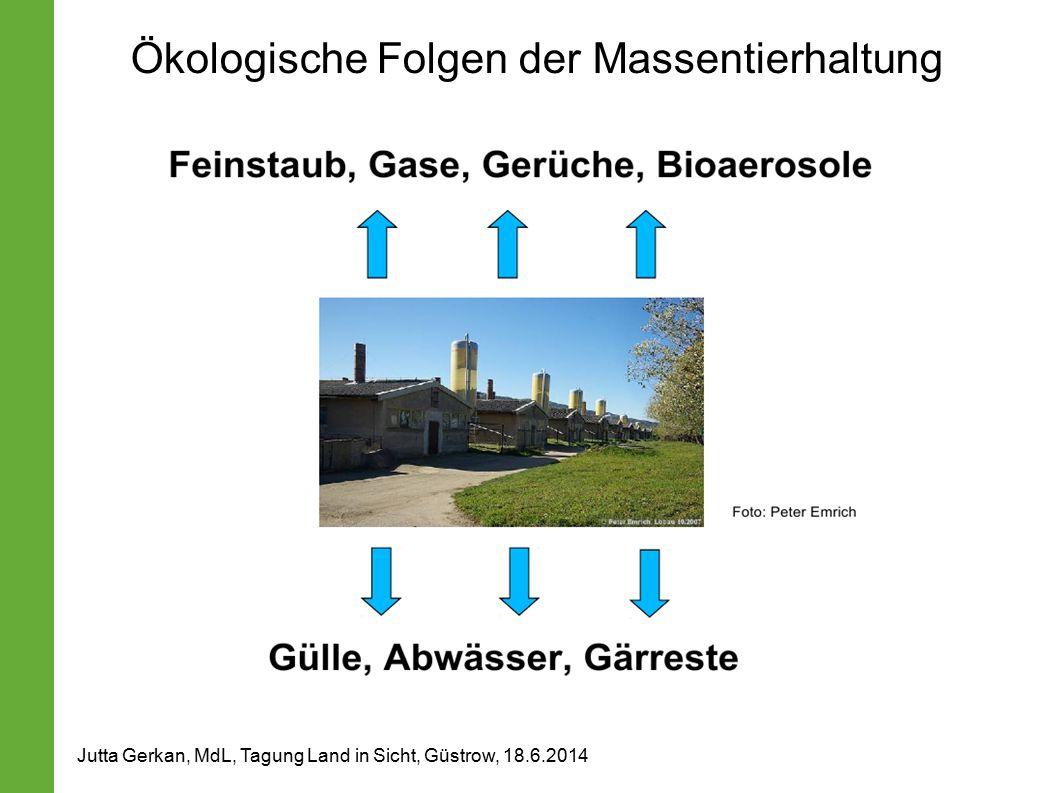 Ökologische Folgen der Massentierhaltung Jutta Gerkan, MdL, Tagung Land in Sicht, Güstrow, 18.6.2014